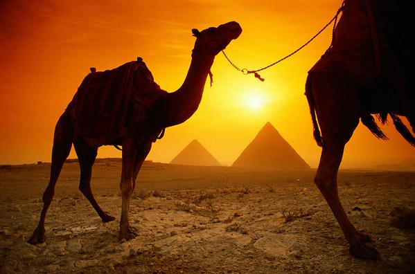 Photo_lg_egypt